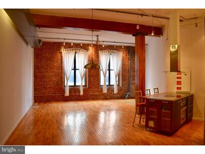 Loft District Condo For Sale: 428-40 N 13th Street #3E