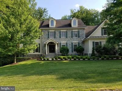 McLean Single Family Home For Sale: 7205 Capitol View Drive