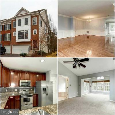Loudoun County Townhouse For Sale: 25231 Dunvegan Square