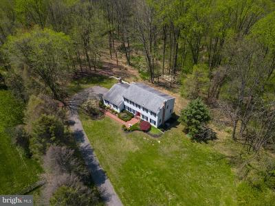 Chadds Ford Single Family Home For Sale: 228 Heyburn Road