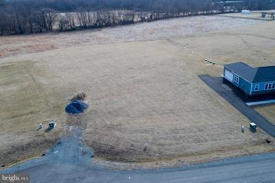 Lovettsville Residential Lots & Land For Sale: 38628 Patent House Lane