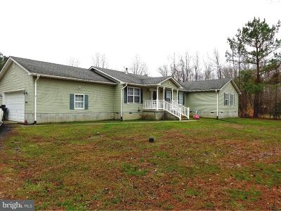 Kent County Single Family Home For Sale: 940 Barney Jenkins Road