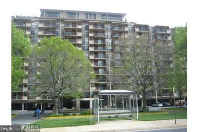 Arlington Rental For Rent: 1300 Army Navy Drive #129