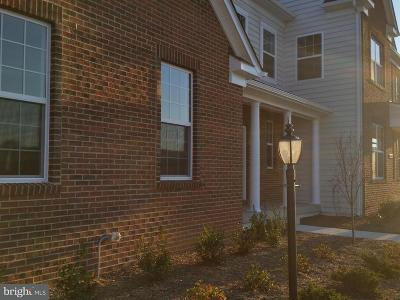 Purcellville Single Family Home Under Contract: 38305 Coltsneck Court