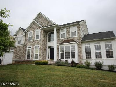 Ashburn Single Family Home Under Contract: 43218 Summersweet Place