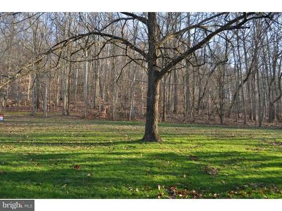 Downingtown Residential Lots & Land For Sale: 1549 Dowlin Forge Road #LOT 3
