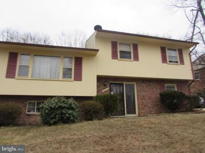 Prince Georges County Single Family Home For Sale: 7407 Walker Mill Road