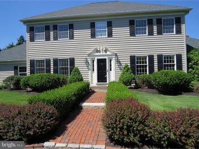 Doylestown Single Family Home For Sale: 3731 Street Road
