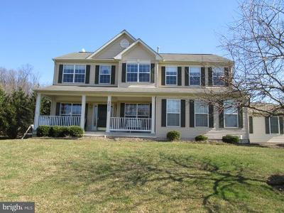 Carroll County Single Family Home For Sale: 3810 Softwind Drive