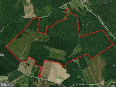 Wicomico County, WICOMICO COUNTY Residential Lots & Land For Sale: Walnut Tree Road