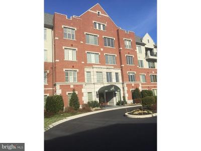 Haverford Twp Condo For Sale: 4109 Parkview Drive
