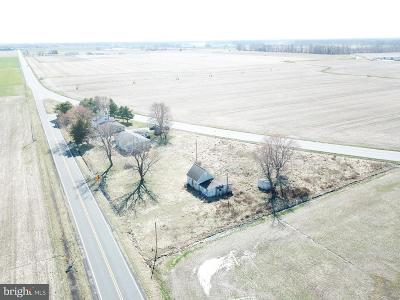 Smyrna Single Family Home Under Contract: 4721 Smyrna Leipsic Road