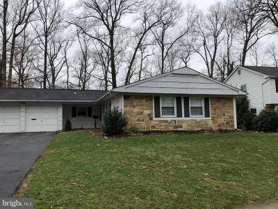 Anne Arundel County Single Family Home For Sale: 1728 Swinburne Avenue