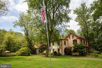 Pipersville Single Family Home For Sale: 6830 Tohickon Hill Road