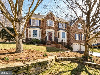Annandale Single Family Home For Sale: 8300 Private Lane
