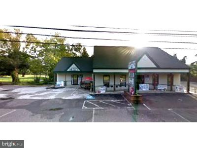 Bucks County Commercial For Sale: 1133 N Easton Road