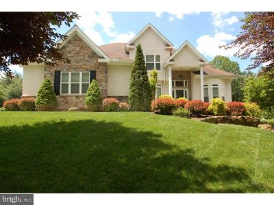 Hockessin Single Family Home For Sale: 1945 Melson Way