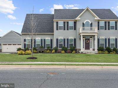 Chantilly Single Family Home Active Under Contract: 42411 Madturkey Run Place