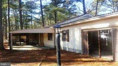 Marion Station Single Family Home For Sale: 5838 Crisfield Highway