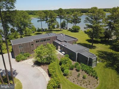 Bozman, Claiborne, Cordova, Easton, Mcdaniel, Neavitt, Newcomb, Oxford, Queen Anne, Royal Oak, Saint Michaels, Sherwood, St Michaels, St. Michaels, Tilghman, Trappe, Wittman, Wye Mills Single Family Home For Sale: 24101 Deep Neck Road