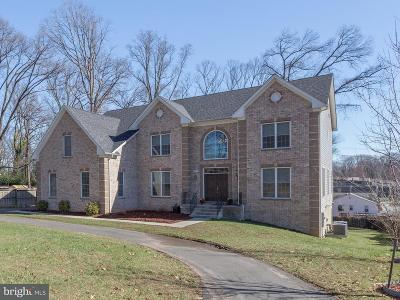Annandale Single Family Home For Sale: 3427 Holly Road