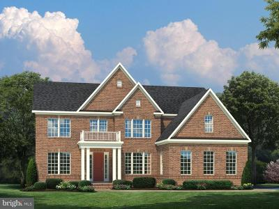 Centreville Single Family Home For Sale: 15801 Delaney Chase Way