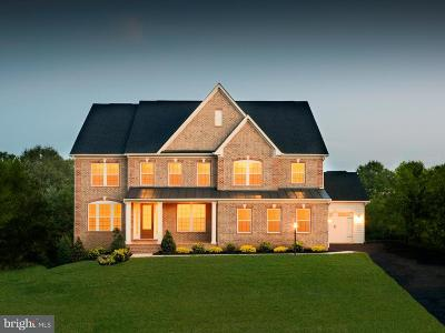 Centreville Single Family Home For Sale: 15802 Delaney Chase Way