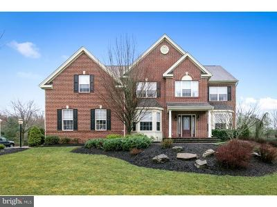 Mount Laurel Single Family Home For Sale: 43 Wood View Drive