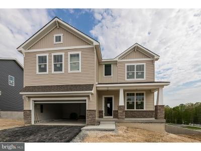 Downingtown Single Family Home For Sale: 75 Tucker Drive