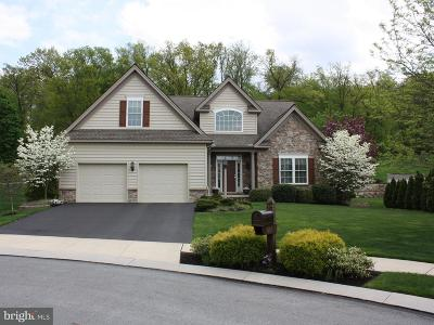 Lancaster Single Family Home For Sale: 657 Eaglet Circle