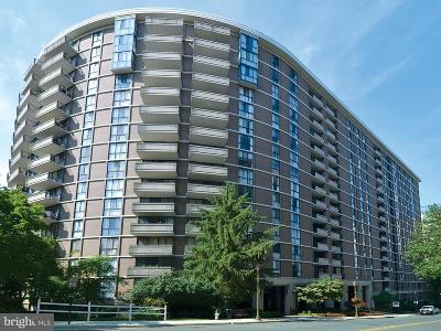 Chevy Chase Condo For Sale: 4620 Park Avenue #1107E