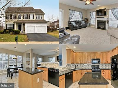 Bristow Single Family Home For Sale: 14500 Swordale Lane