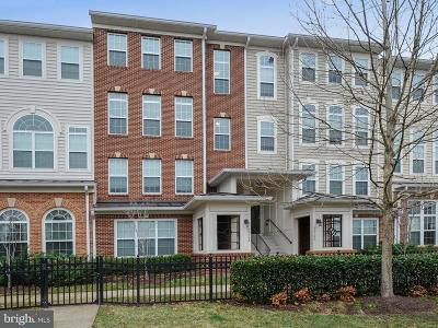 Centreville, Clifton Condo For Sale: 6016 Machen Road #174