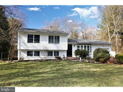 Princeton Junction Single Family Home For Sale: 10 Colonial Avenue