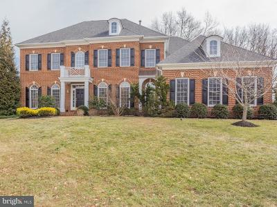 Falls Church Single Family Home For Sale: 6694 Valley Brook Drive