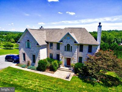 Single Family Home For Sale: 6353 Trout Stream Drive