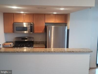 Baltimore Condo For Sale: 414 Water Street #2814