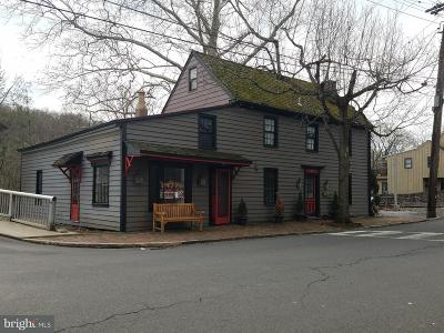 Bucks County Commercial For Sale: 49 W Ferry Street