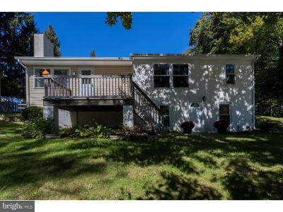 Coatesville Single Family Home For Sale: 291 Hurley Road