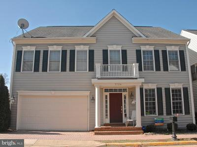 Lorton Single Family Home For Sale: 7724 Tea Table Drive