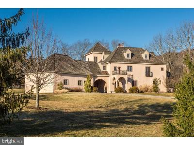 Bucks County Single Family Home For Sale: 2577 Township Road