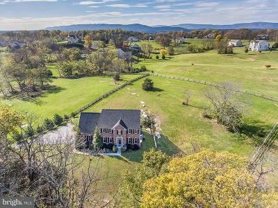 Frederick County Single Family Home For Sale: 627 Chimney Circle