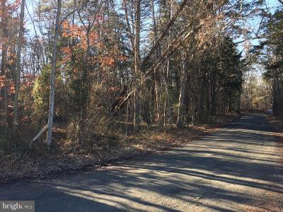 Nokesville Residential Lots & Land For Sale: 11250 Reid Lane