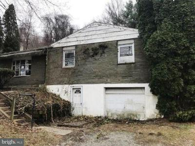 Chester County Single Family Home For Sale: 113 Lower Gap Road
