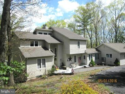 Basye Single Family Home For Sale: 427 Palmer Road