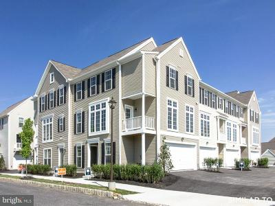 Camp Hill, Mechanicsburg Townhouse For Sale: 3038 Meridian Commons #E