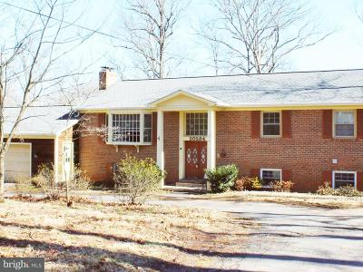 Sterling Single Family Home For Sale: 20284 Broad Run Drive