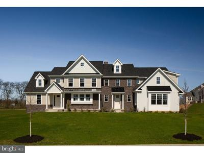 Bucks County Single Family Home For Sale: 87-Lot1 Walter Road