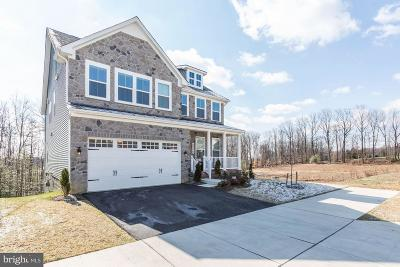 Burtonsville Single Family Home For Sale: 4306 Camley Way