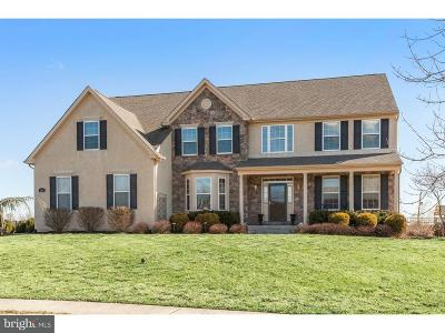 Royersford Single Family Home For Sale: 163 Wentworth Circle